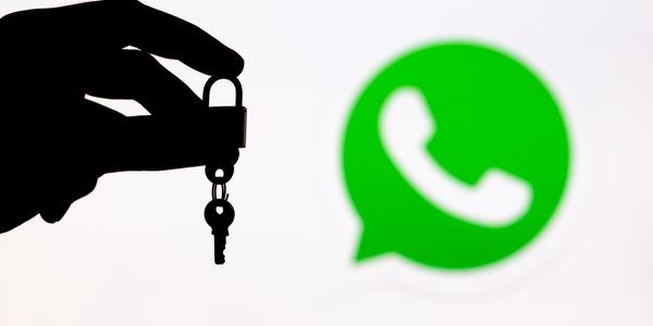 ver el whatsapp de otro celular